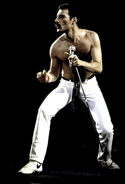 Freddie Mercury performing on stage with Queen Photo Print (8 x 10)