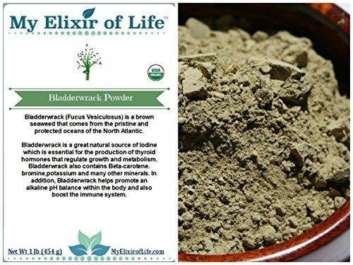 Organic Bladderwrack Powder Fucus Vesiculosus product image