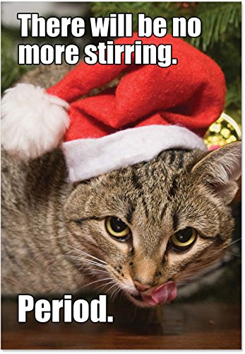 NobleWorks ''No More Stirring Cat'' Funny Merry Christmas Greeting Card, 5'' x 7'' (1829)