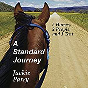 A Standard Journey Audiobook