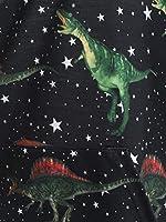 CharMma Womens Casual Skew Neck Long Sleeve Star Dinosaur Print Pullover Sweatshirt