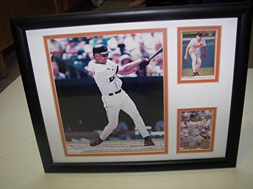 Ripken Jr Framed 8x10 Photo - Cal Ripken Jr. Baseball 8x10 Photo and Card Framed Matted Baltimore Orioles