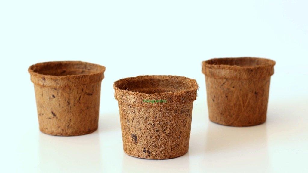 Pokugiardini, Vasi in fibra di cocco Ø 13 cm, 10 Pezzi Napronet Ltd