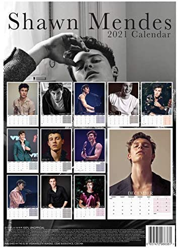 Shawn Mendes 2 2021 Kalender A3