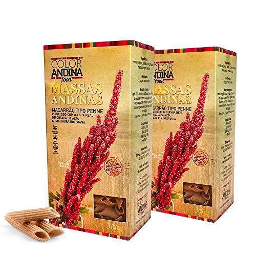 Massa de Quinoa Color Andina Food, tipo Penne 70% Quinoa, 2 caixas de 300g