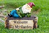 Alpine Gnome Laying on 'Welcome To My Garden' Sign Statue, 9 Inch Tall Review