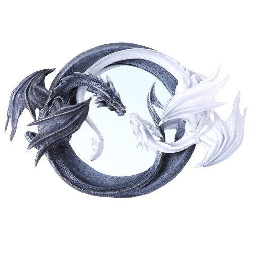 Large Chinese Feng Shui Ying Yang Day Night Twin Nemesis Dragon Round Wall Mirror Plaque Decor (Wall Plaque Chinese)
