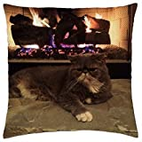 kitty by the fireplace - Throw Pillow Cover Case (18 x 18)