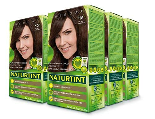 Naturtint Permanent Hair Color 4G Golden Chestnut (Pack of 6), Ammonia Free, Vegan, Cruelty Free, up to 100% Gray Coverage, Long Lasting Results