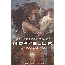 Las entrañas de Nidavellir II: Promakhos (Saga Aesir-Vanir) (Spanish Edition)