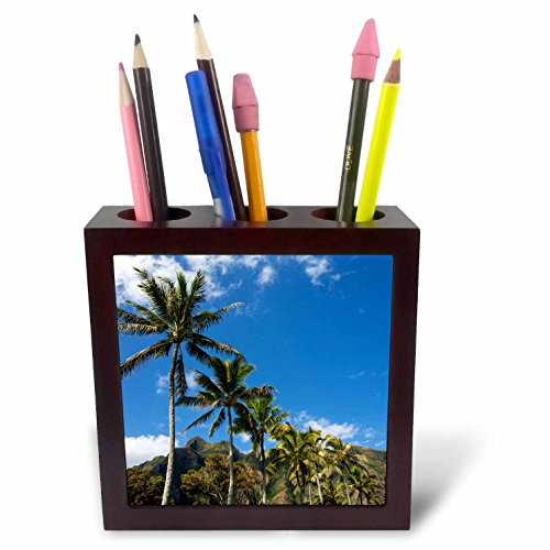 3dRose Danita Delimont - Forests - Palm trees line the road, Koolau Mountains, Oahu, Hawaii - 5 inch tile pen holder (ph_278918_1) by 3dRose
