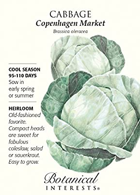 Copenhagen Market Cabbage Seeds - 1.5 grams - Botanical Interests