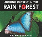 Looking Closely in the Rain Forest, Frank Serafini, 1553375432