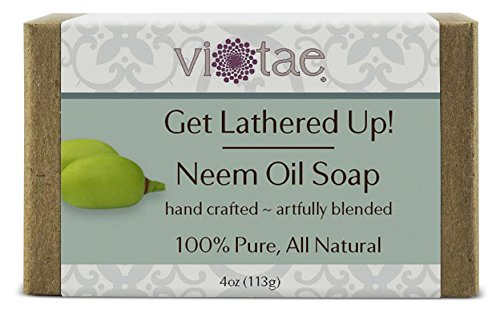 Neem Oil Soap (Vi-Tae 100% Natural and Organic Handmade 'Get Lathered Up' 4oz Soap Bars (Neem))