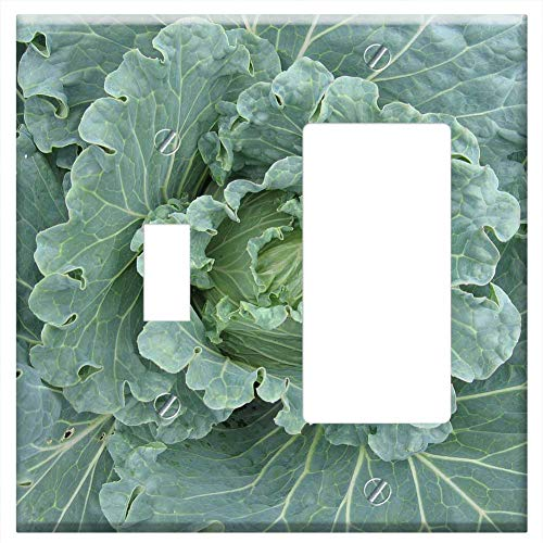 1-Toggle 1-Rocker/GFCI Combination Wall Plate Cover - Cabbage Brassica Vegetable Organic Plant Gree
