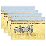 My Daily Zebra In Africa Placemats for Dining Table Set of 6 Heat Resistant Washable Polyester Kitchen Table Mats