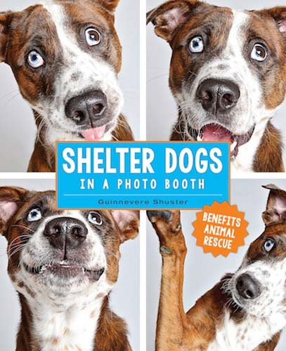 Man's best friend! What better way to showcase adoptable dogs than by letting their true personalities shine in a photo booth! In the tradition of the best-selling dog photography book, Underwater Dogs, Shelter Dogs in a Photo Booth wins the heart of...