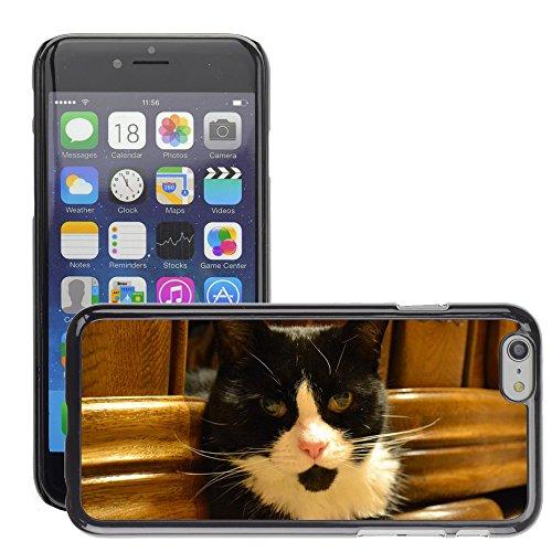 """Bild Hart Handy Schwarz Schutz Case Cover Schale Etui // M00133663 Katze Schwarzweiss // Apple iPhone 6 PLUS 5.5"""""""