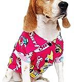 Dog Shirts Summer Camp, Dog Shirts, Dog Clothes, Small, Medium, Large, Colorful Pet Shirts, Shirt Pet Clothing, Puppy Clothes, Summer Dog Apparel, Hawaiian styles, Colorful Flowers Hawaiian shirt (M)