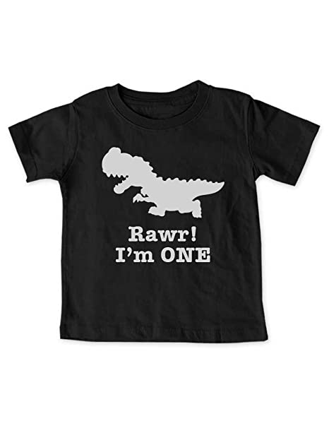 Amazon Cute Funny Rawr Im ONE Dinosaur First Birthday