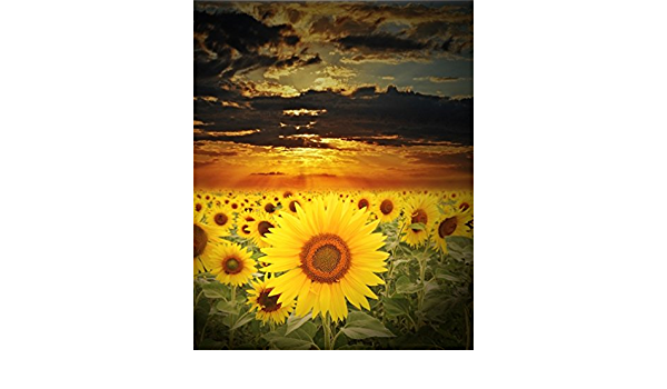 8x10 FT Photography Backdrop The Road Theme Highway with Sunflower Field Backdrop Nature Panorama Background for Kid Baby Boy Girl Artistic Portrait Photo Shoot Studio Props Video Drape Vinyl