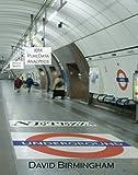Netezza Underground, David Birmingham, 1439207437