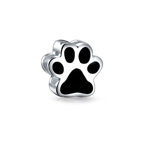 la pata del gato cachorro imprimir detalles del encanto del grano de
