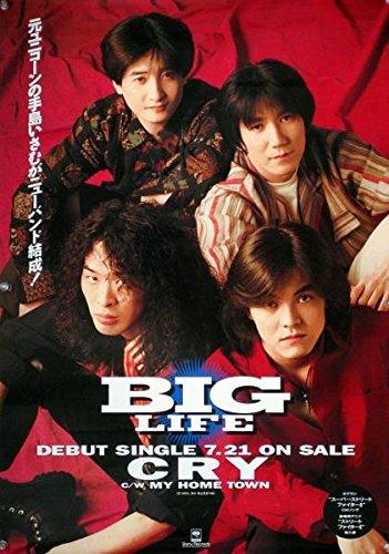 BIG LIFE 手島いさむ ユニコーン B2ポスター N15015