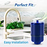 ICEPURE RF-9999 Faucet Water Filter Repacement for