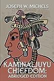 img - for Kaminaljuyu Chiefdom: Abridged Edition book / textbook / text book