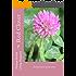 Red Clover - Trifolium pratense: Trifolium Pratense (Natural Herbal Living Magazine Book 14)