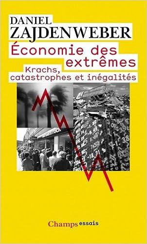 Economie des extrêmes : Krachs, catastrophes et inégalités