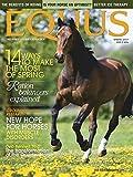 Equus: more info