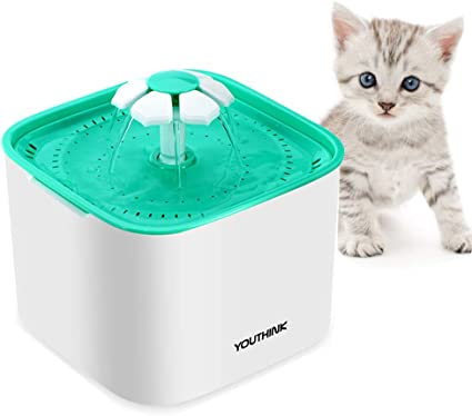 Amazon.com: Gato Fuente de agua, Auto circulante Pet Fuente ...