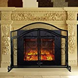 INNO STAGE Wrought Iron Fireplace Screen with 2
