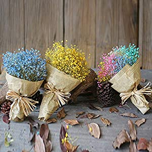 Meka-supplies - Vivid Gypsophila Natural Dried Flower Baby's Breath Dry Flower Wedding Party Home Decoration Handmake Decorative Stamen Wreath 15