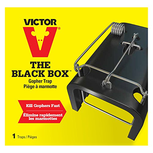 Victor The Black Box Gopher Trap 0625, New, Free Shipping