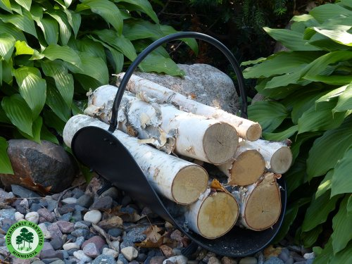 Gas Fireplace Decorative Birch Logs - Minnesota White Paper Birch Tree Logs w/ Sustainability Medallion for Environmentally Renewable Harvesting Practices ()