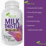 Milk Thistle Extract by Natural Lifeforce - Silymarin Liver Detox and Cleanser - Improves Liver Function - 90 Capsules