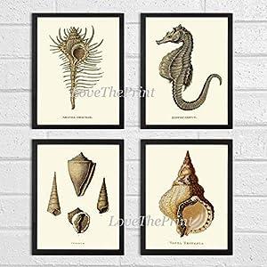 51dWdlTCvgL._SS300_ Seahorse Wall Art & Seahorse Wall Decor
