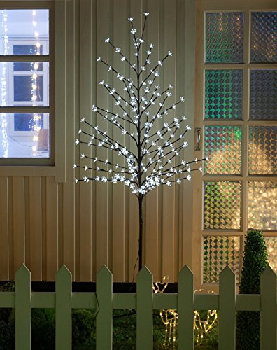 Outdoor Patio Lighted Trees - 3