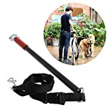 Bicycle Dog Leash - Milkhouse Dog Bicycle Leash Hands Free Lead Keeper Pet Walker Run Train Ride Bike Distance