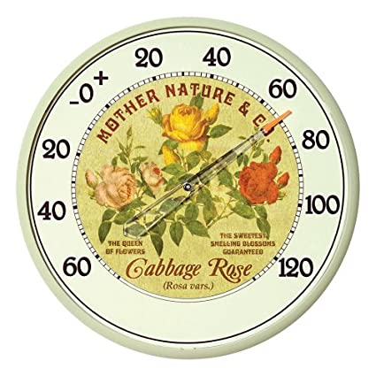 Amazon.com: AcuRite 01836 12.5-Inch Wall Thermometer, Cabbage Rose ...