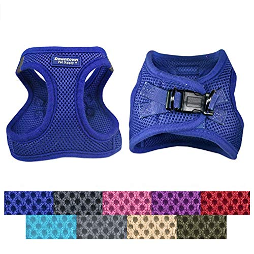 Downtown Pet Supply Best No Pull, Step in Adjustable Dog Harness with Padded Vest, Easy to Put on Small, Medium and Large Dogs (Blue, S)