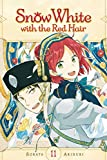 Snow White with the Red Hair, Vol. 11 (11)