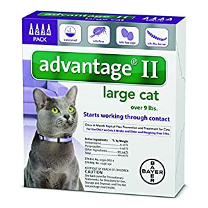 Advantage 2 flea control for cats and kittens over 9 lbs 4 month...