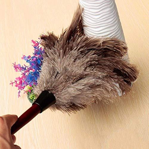 XKMY Stofborstel Anti-statische Struisvogel Veer Bont Houten Handvat Borstel Stofzuiger Stof Reiniging Tool…