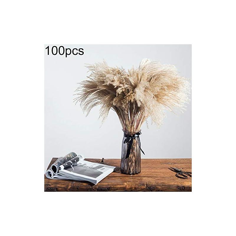 silk flower arrangements yunbox299 1bundle/100pcs pampas grass bunch, natural dried reed plumes, diy phragmites communis, bouquet flower bunch arrangement wedding holiday party decor