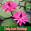Emily Grant Hutchings Tropical Night Blooming Water Lily (Annual)