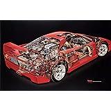 Ferrari F40 Cutaway David Kimble Extremely Rare Car Poster